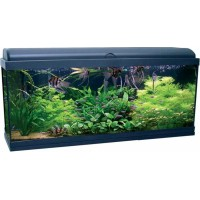 AQUARIUM AQUADREAM 100X30X45 EQP LEDS