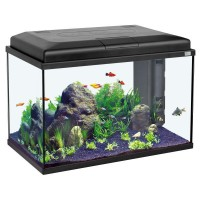 AQUARIUM AQUA START 55 LED NOIR