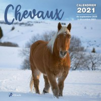 CALENDRIER CHEVAUX 2021