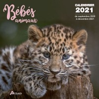 CALENDRIER BEBES ANIMAUX 2021