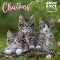 CALENDRIER CHATONS 2021